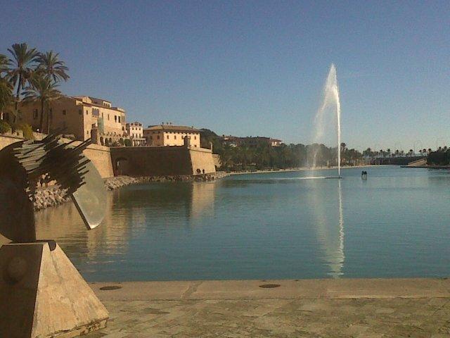 Palma-20131216-00312