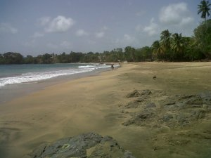 Lovely, empty beaches in Tobago!