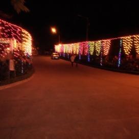 Diwali lights!