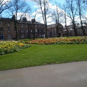 Spring in Cambridge!
