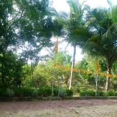 Gardens at Beautiful BK Centre Puri India!