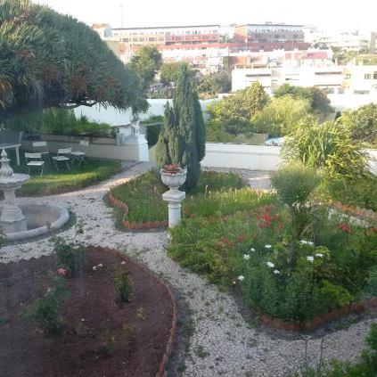 Beautiful garden at BK!!
