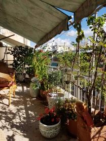Terrace at my flat!
