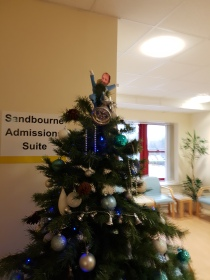 Christmas tree in admissions of Manager of Department on top.